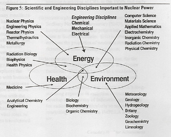 essay on nuclear technology Nuclear technology can be useful for things such as food preservation, insect control, agriculture, medicine, water resources, and in industries as well however, with such tremendous benefits, come large drawbacks there have been three large accidents in the history of nuclear energy: three mile.